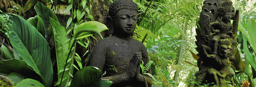 Gautama Bouddha