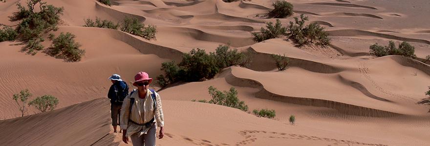 Oasis et dunes du Draa