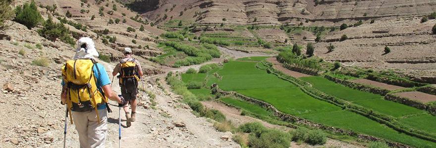 Les oasis du Saghro