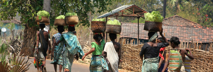 Voyage au Pradesh